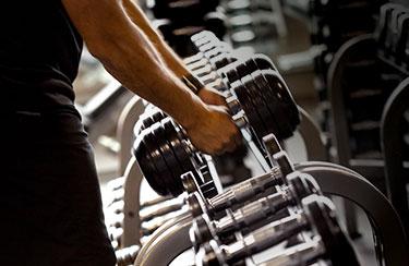 Workout_BarsPlatesDummbells_375x244px