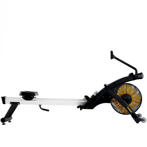 Buy Renegade Air Mag Rower Classic Online - Egym Supply